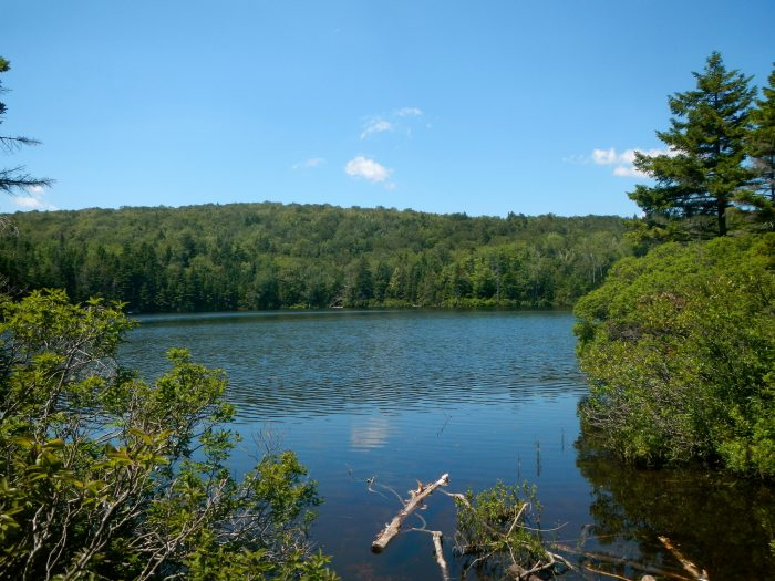 8.  Griffith Lake