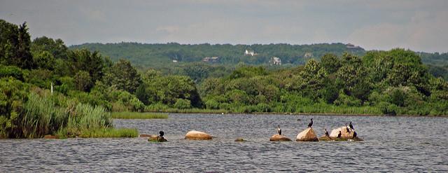11. Ninigret National Wildlife Refuge, Charlestown
