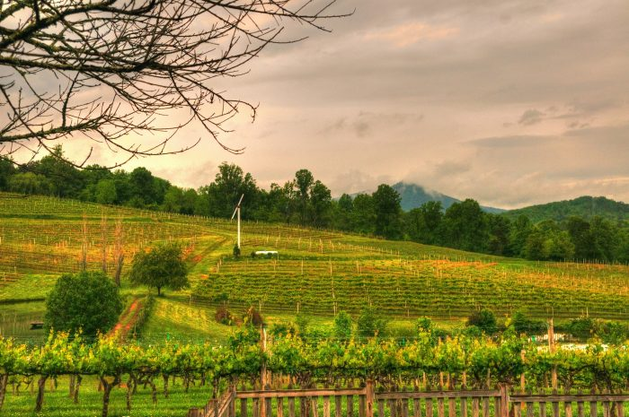 9. Indulge in a wine weekend. There are more vineyards in this state than you think.