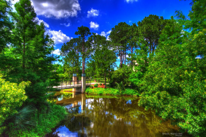 2) New Orleans City Park is the largest municipal park in the United States.