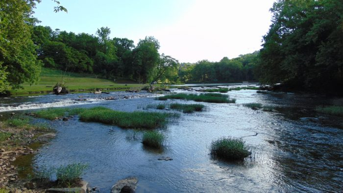 2. Millrace Campground at New River Trail State Park (Galax)