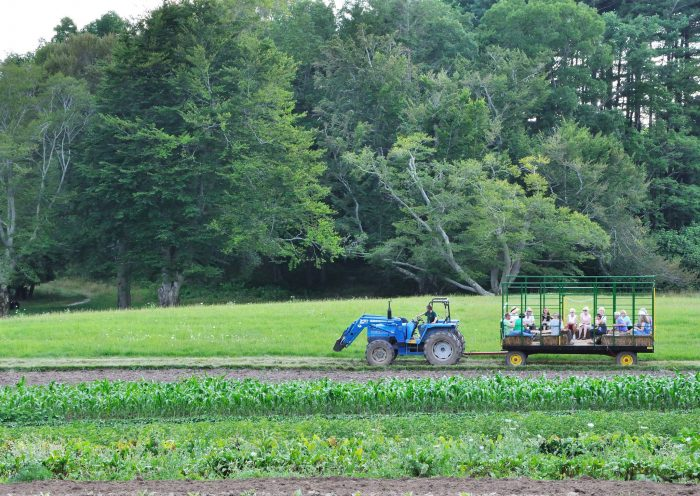 10. Take a hayride at Langwater Farm in Easton.