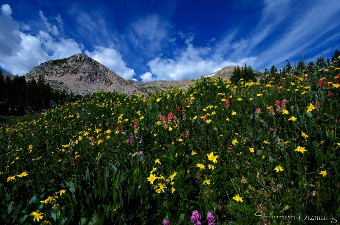1. Indian Peaks Wilderness