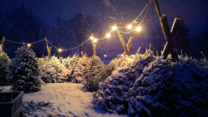 7. Snowy, magical winters.