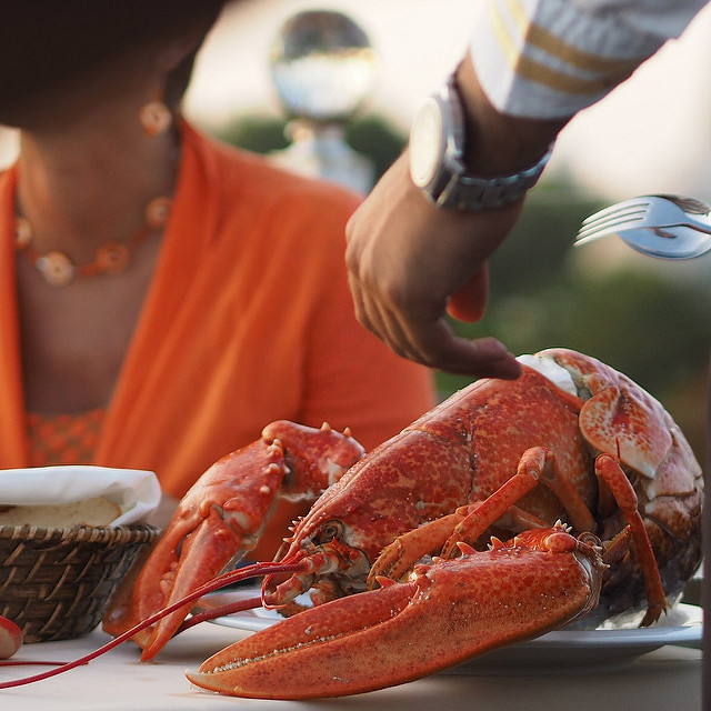 8. Despite what many think, the people of Rhode Island do not eat lobster every day.