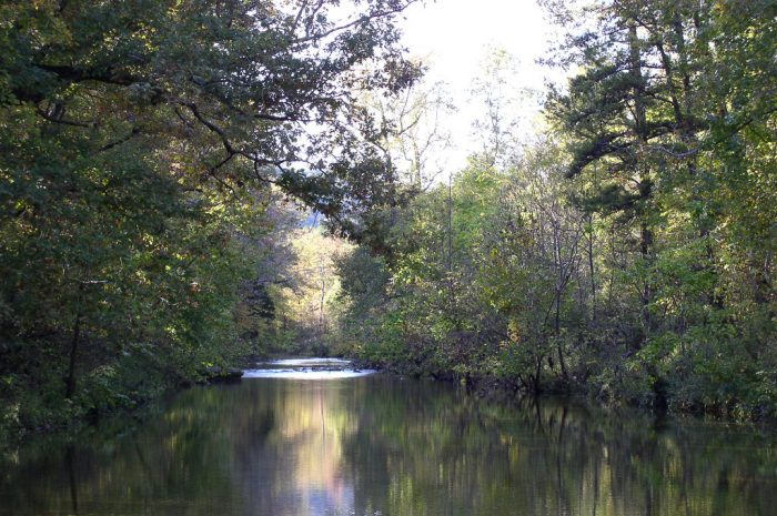 6. Blanchard Springs Campgrounds (near Fifty-six)