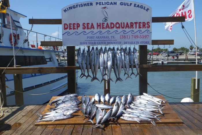 5. Port Aransas is a great place for some successful deep sea fishing!