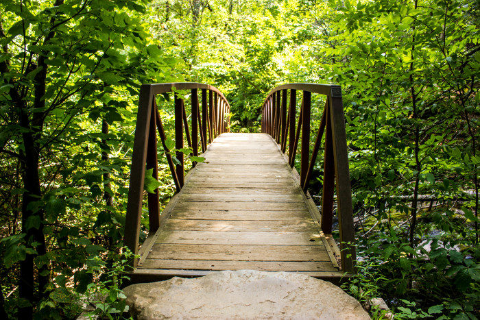 Virginia: White Oak Canyon