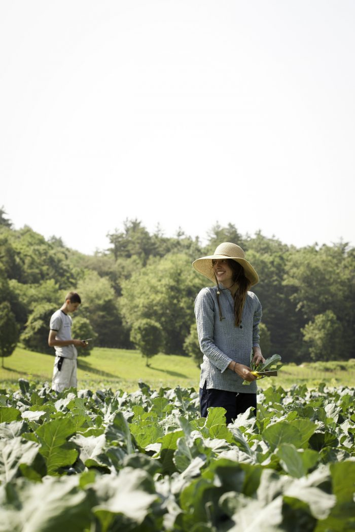11. Pick your own produce in Hampshire County.