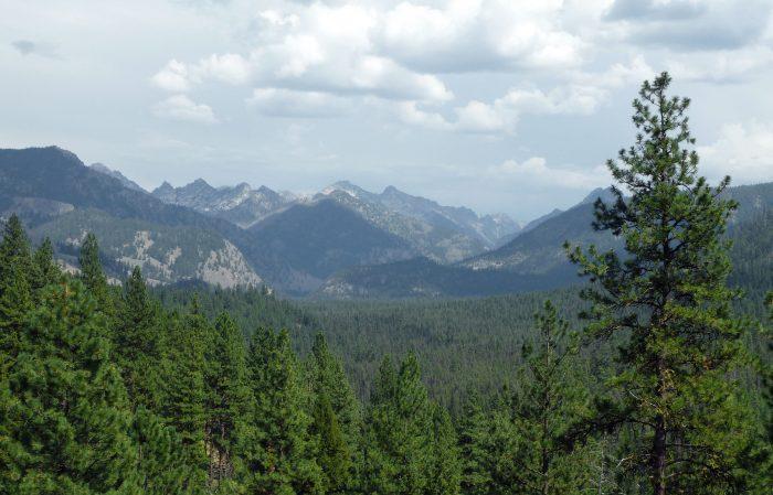 8. Ponderosa Pine Scenic Byway