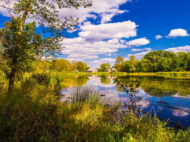 4. Take a Trip to the Kesling Wetland