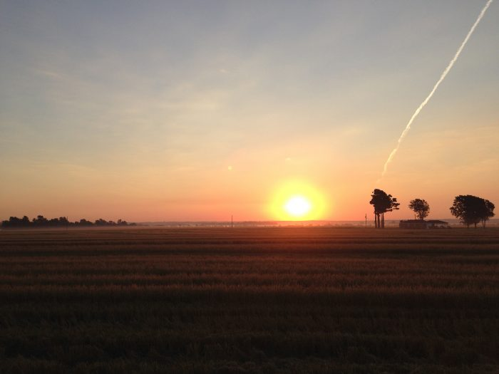 26. Watch the sun rise from across the expansive delta.