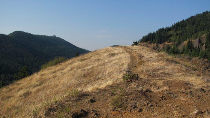 11. Hamilton Mountain