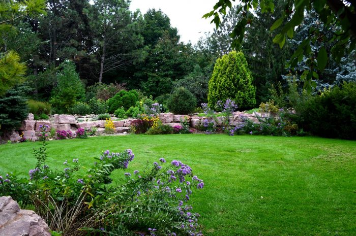 14. Visit a local flower garden and take in the beauty.