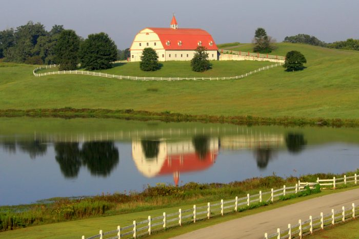 5. This view of Fred Hallmark Farm, in Warrior, is picture perfect.
