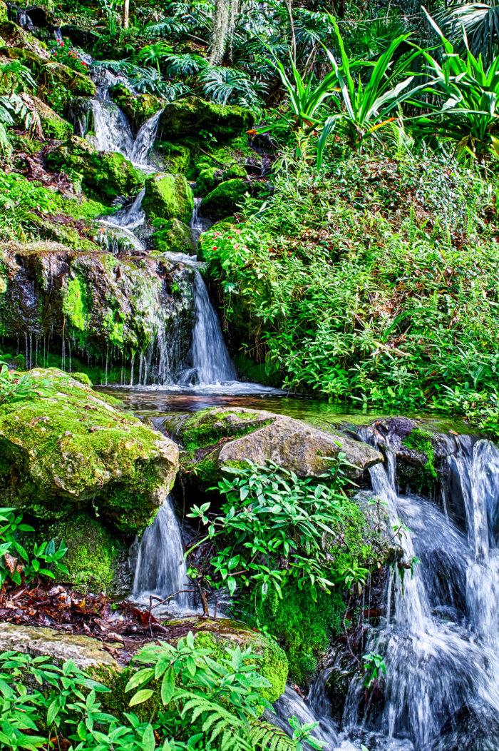 10. Rainbow Springs State Park, Dunnellon
