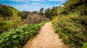 10 Incredible Hikes Under 5 Miles Everyone In Southern California Should Take
