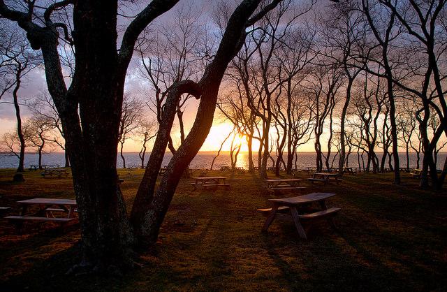 Rhode Island: Colt State Park, Bristol