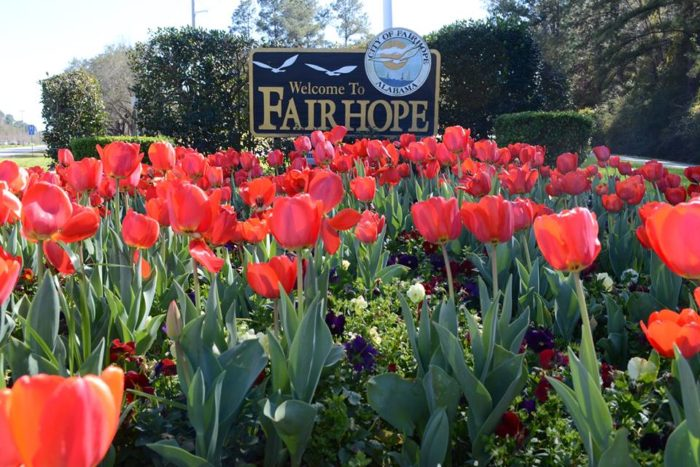 Fairhope is a mid-sized city in southwest Alabama, but it's full of small-town charm.