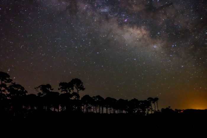 18. This starry sky was captured at TH Stone Memorial St Joseph Peninsula State Park, Cape San Blas.