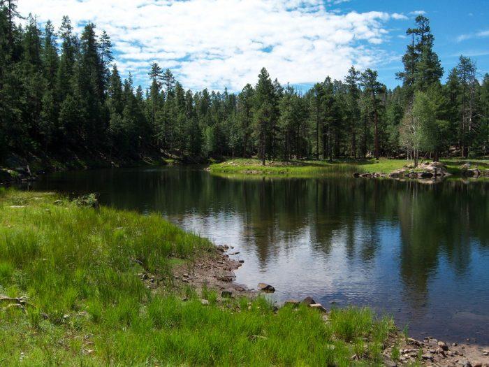 7. Knoll Lake