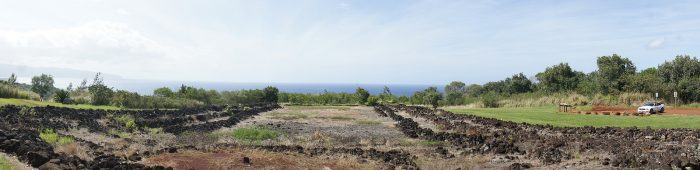 2. A quick history lesson awaits you at Pu'u o Mahuka Heiau State Historic Site.