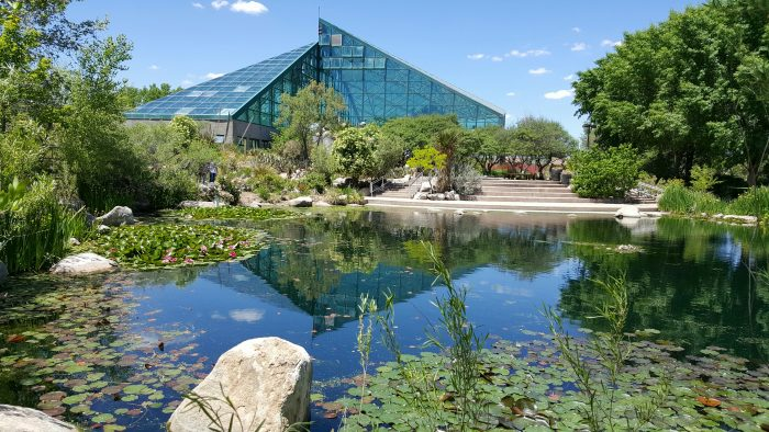 you must visit this outstanding oasis in albuquerque new mexico - Abq Biopark Botanic Garden