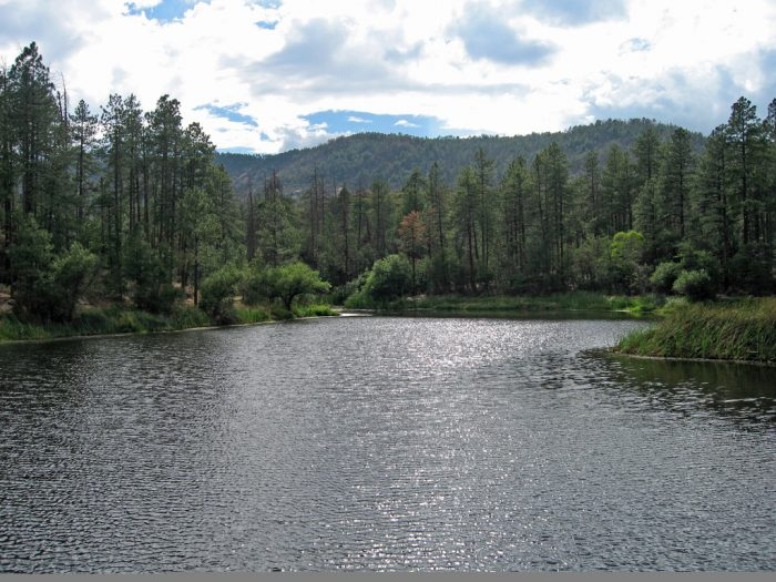 Crown King Az >> 7 Great Camping Spots In Arizona