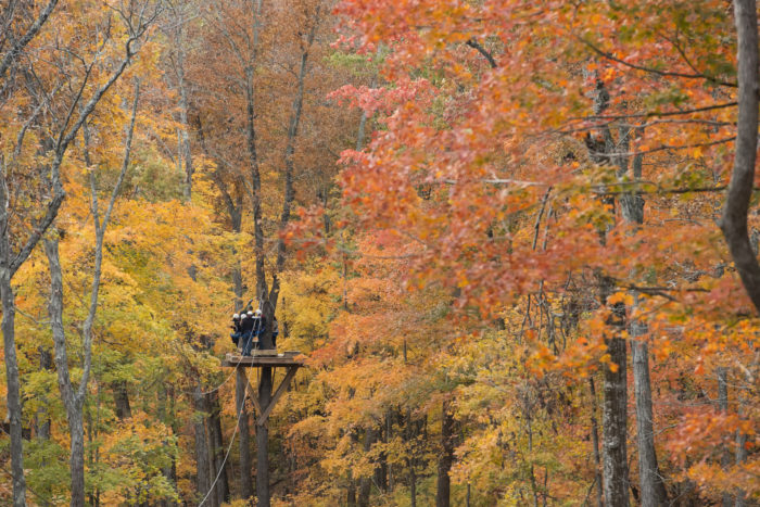 10.  See the Ozarks from the canopy.