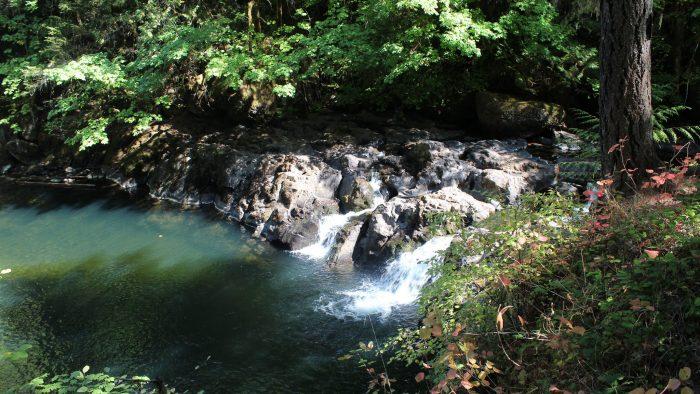 8. Cavitt Creek Falls