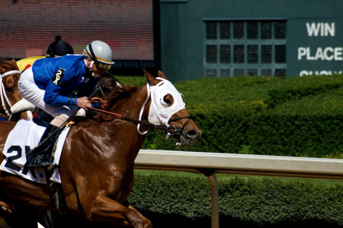 22. Play the ponies at Oaklawn Park.