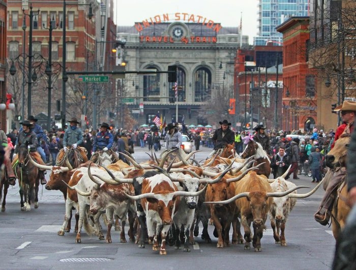 5. And we continue to celebrate our legendary Old West heritage with the annual National Western Stock Show, Rodeo, and Parade.