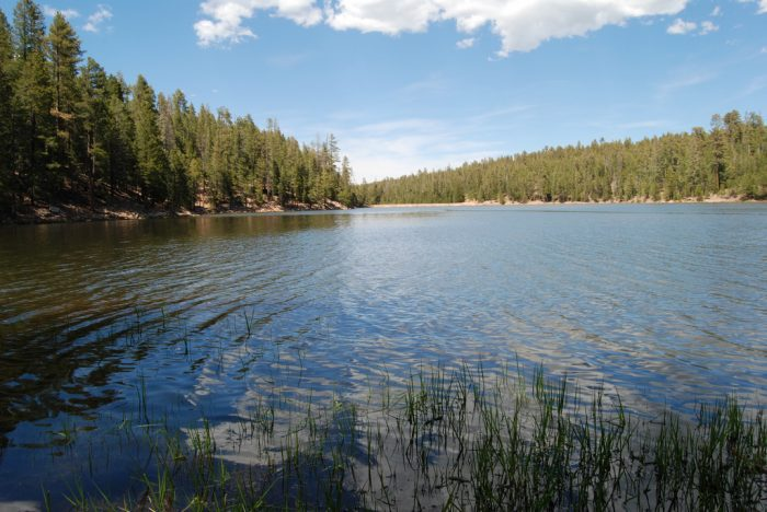 14 arizona lakes to visit this summer for Fishing lakes in arizona