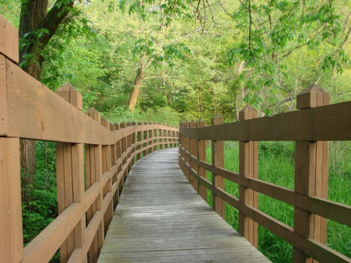 7. Take a hike at Wallace State Park.