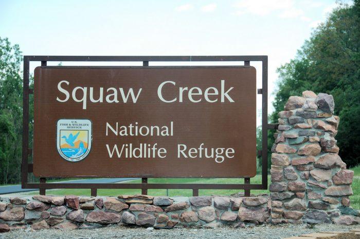 8. Go bird-watching at Squaw Creek National Wildlife Refuge.
