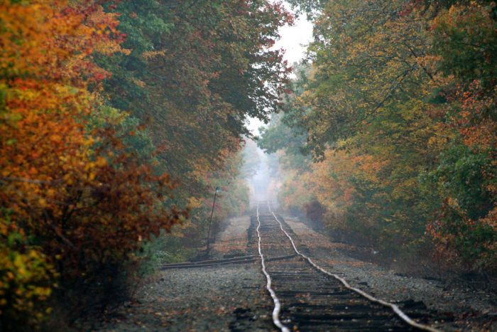 17. Taken at Camp Merriwood in Berkley, this railroad looks like it disappears into nothingness.
