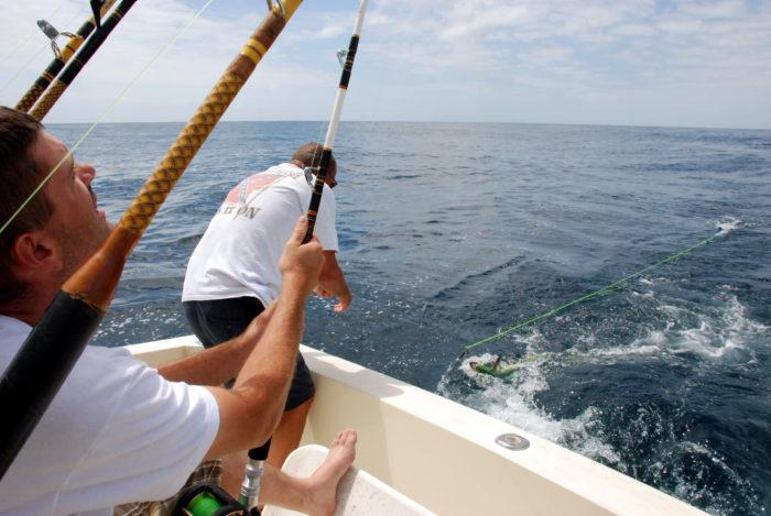 6. We're all fishermen.