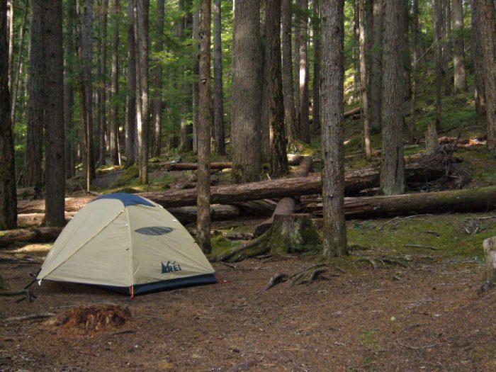 2. Ohanapecosh Campground (Mount Rainier Park)
