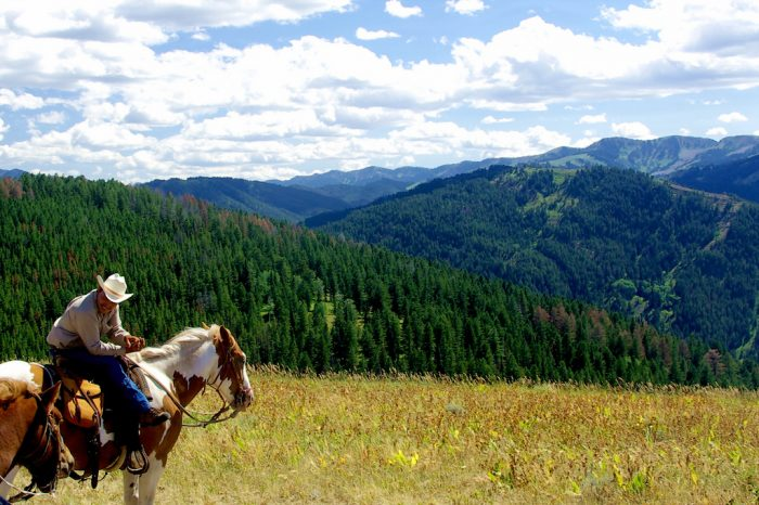 12. Trail riding south of Jackson along the ridgeline.