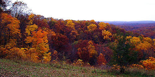 4. Brown County State Park