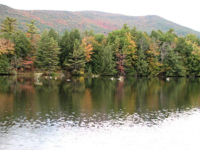 16.  Lake Shaftsbury State Park, Shaftsbury