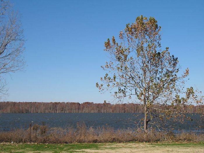 3. Lake Washington, Washington County