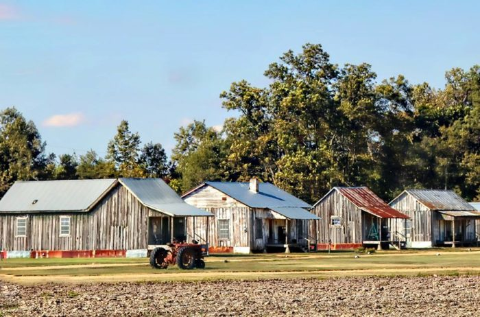 3. Tallahatchie Flats, Greenwood