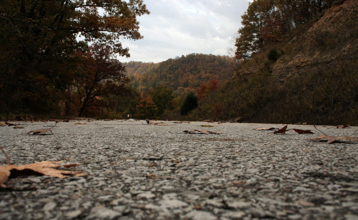 1. Pig Trail Scenic Byway