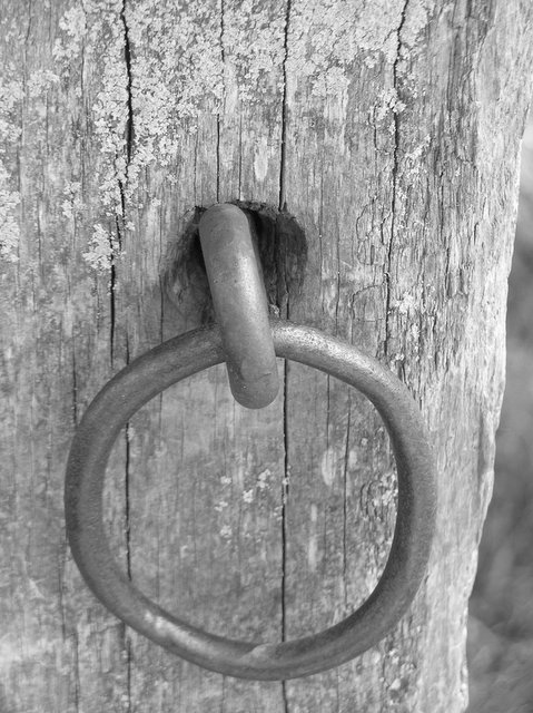 11. Hitching Post