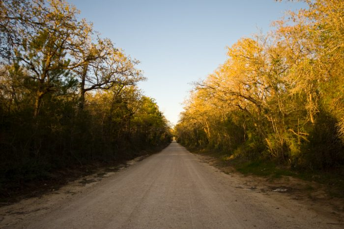 10. We always drive in the middle of a dirt or gravel road when no one is around.