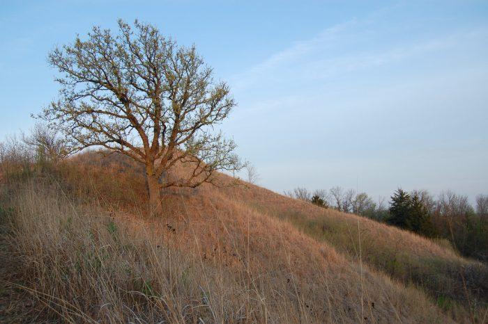 1. Hitchcock Nature Center, Honey Creek, Iowa