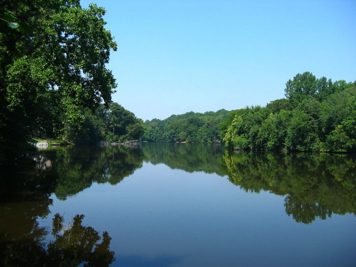6. Moore's Lake, Dover