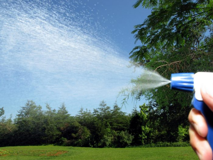 4. Invest in bug spray. And maybe a lot of it.