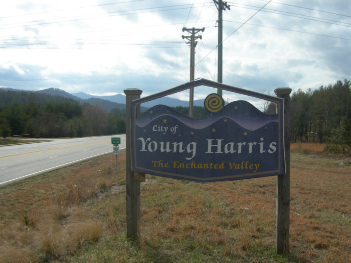 15. Young Harris